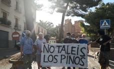 Los vecinos de la Bovedilla de Guadix, contra la tala de pinos