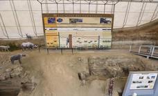El Centro Paleontológico de Fonelas reabre sus puertas