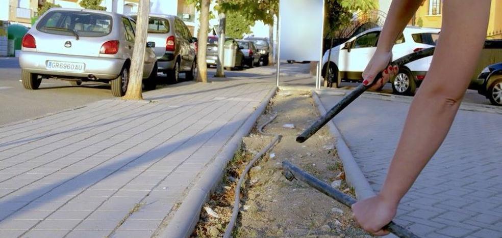 Una ola de vandalismo desbarata los jardines de Huétor Vega