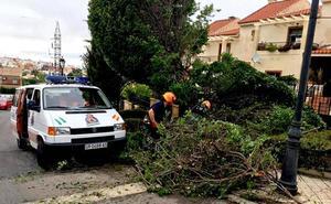 Árboles partidos en Huétor Vega, un rescate en La Zubia y caos en el suministro eléctrico de Ogíjares