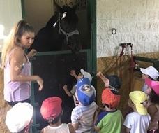 Pequeños de uno a tres años disfrutan de los animales en una clase de inglés