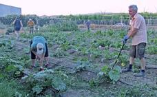 Nace una escuela de jardinería agroecológica en La Zubia