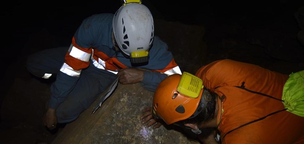 La mina Mulata, ¿un futuro museo?
