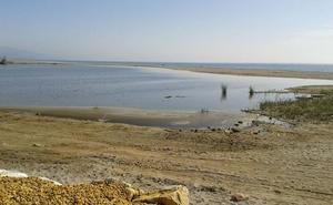 Ecologistas en Acción lamenta que la Junta no incluya el Salar de los Cano en la Red de Humedales