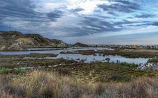 Una mesa multidisciplinar trabajará por el bien del espacio natural del Salar de los Canos y su entorno