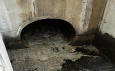 Toxicología confirma que el vertido de Carboneras es «contaminante» y causa «daños sustanciales»