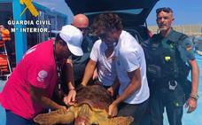 Aparece una tortuga boba entre redes de pesca y plásticos en una playa de Garrucha