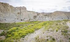 El Ministerio de Cultura y el Museo Arqueológico Nacional apoyan el Plan Argar