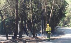 Controlado el fuego cerca de Algarinejo, en el término municipal de Montefrío