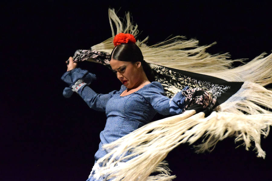 El mejor flamenco, a beneficio de los afectados por Fibromialgia de Loja
