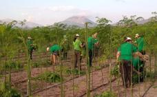 Jóvenes hueteños se forman como horticultores y floricultores