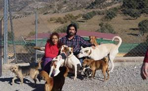 Un mercadillo de 'segunda mano' en Tiena ayudará a un refugio de animales abandonados