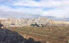 El Ayuntamiento de La Mojonera cifra en 10 millones de euros los daños en 40 hectáreas de invernadero