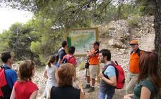 Vícar cierra su programa Deporte y Naturaleza con una ruta entre Dalías y El Ejido