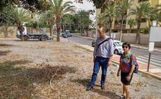 IU propone un Plan para controlar el mantenimiento periódico de las zonas verdes