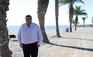El PSOE culpa del problema de los mosquitos a la «desidia» y el «desgobierno» del Ayuntamiento