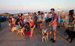 Ciudadanos reclama partidas para empezar a acondicionar espacios de ocio para mascotas