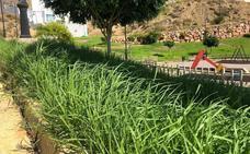 Treinta jardineros más para intentar arreglar el caos del mantenimiento de parques y jardines