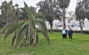 El PSOE denuncia el «absoluto abandono» de los parques de Roquetas de Mar