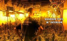 Cultivaba casi 400 plantas de marihuana a menos de 50 metros de un parque infantil de Felix