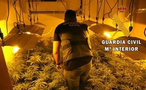 La Guardia Civil detiene a dos personas y descubre 295 plantas de marihuana y una escopeta cargada en La Mojonera