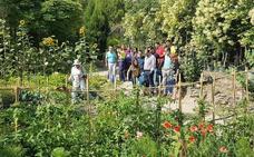 Finaliza el taller de mantenedor de jardines y espacios verdes desarrollado en el vivero municipal