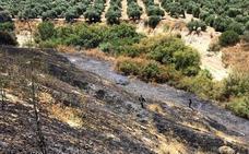 Los Bomberos de Úbeda tuvieron que actuar en dos incendios registrados en el entorno