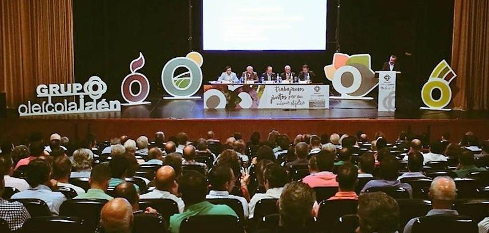 Unos 600 profesionales analizaron la evolución, innovación y valorización del olivar