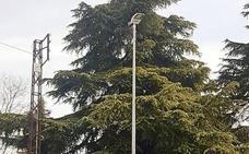 Sustitución de unas 850 luminarias del alumbrado público de las 1.700 previstas