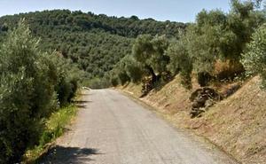 Muere una mujer cerca de Úbeda al salirse de la vía el vehículo en el que viajaba