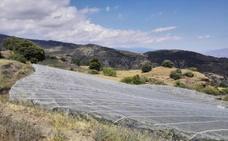 Agricultores de Sierra Nevada reciben 123 multas en dos años por las mallas antigranizo