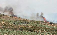 Controlado el incendio en un paraje de Villanueva del Arzobispo