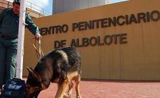 Sindicatos exigen más seguridad tras incendio en la cárcel de Granada