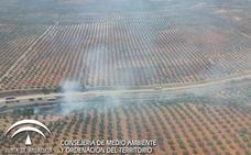 Cifran en menos de media hectárea la superficie afectada por el fuego en Carboneros