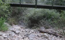 El río Quiebrajano, desecado por cortar el caudal ecológico de la zona, según Ecologistas