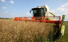 Prevén una cosecha de cereales de invierno que será la más baja de los últimos 25 años