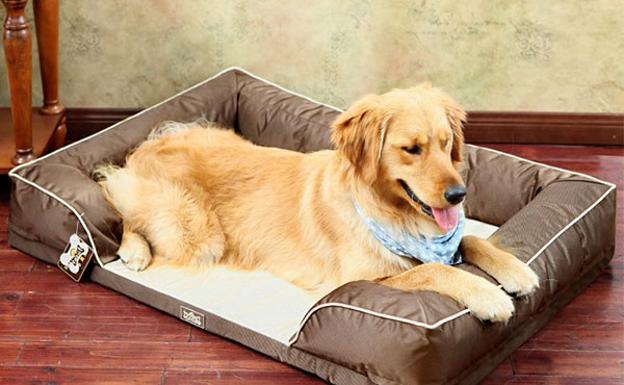 Resultado de imagen para Camas para Perros - Â¿Sabes que cama necesita tu perro?