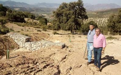 La Junta trabaja en la conservación de 50 kilómetros de caminos forestales en Sierra Mágina