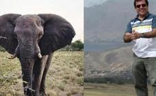 Un cazador muere tras ser pisoteado por un elefante en Namibia