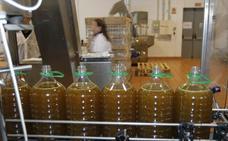 Destacan «la dificultad del envasado y de la venta del aceite»