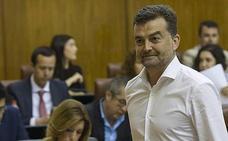 Antonio Maíllo, reelegido coordinador de IU Andalucía con el 83,03% de los votos de los militantes