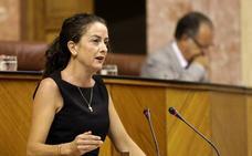 """El PP exige en el Parlamento """"más celeridad y más dinero"""" para el Castillo de Vélez Blanco"""