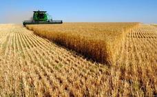 Advierten contra los alimentos que más dañan la salud del planeta