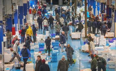 Casi 11 toneladas de alimentos por Navidad