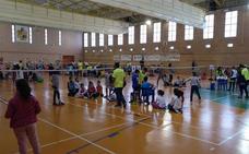 La Diputación de Almería promociona el bádminton entre los jóvenes a través de los Juegos Deportivos Provinciales