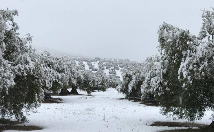 La provincia de Jaén se viste de blanco
