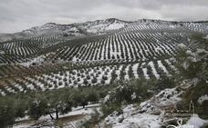 Jaén continúa en alerta amarilla por nieve y las temperaturas bajarán