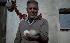 Los huevos azules de un alpujarreño