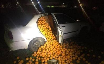 Detienen a cinco personas con 4.000 kilos de naranjas en el coche y alegan que son para consumo propio