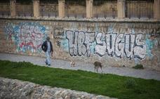 Vandalismo en las riberas del Genil